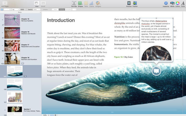 iBook-author1